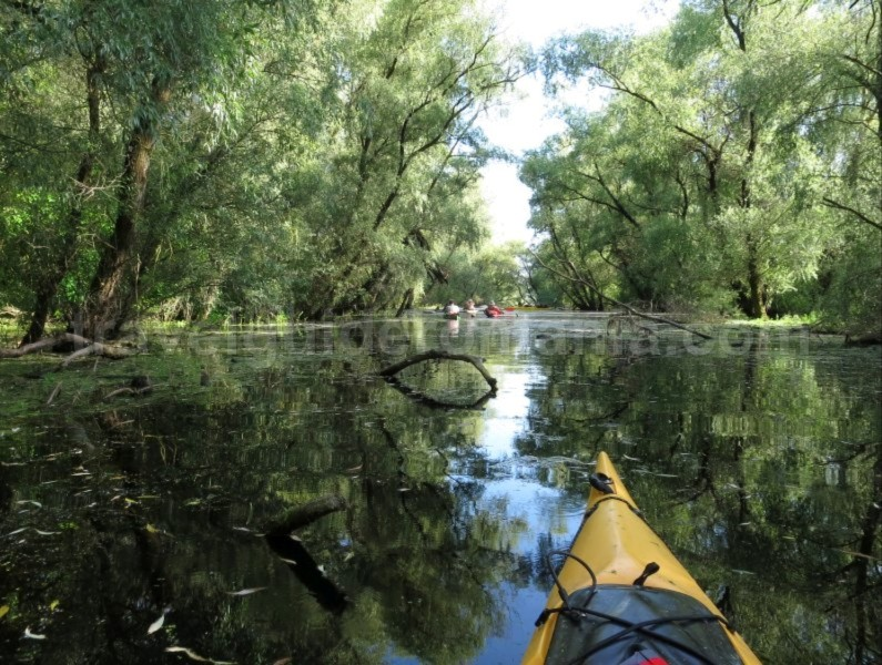 Danube Delta Nature Reserve kayak holiday