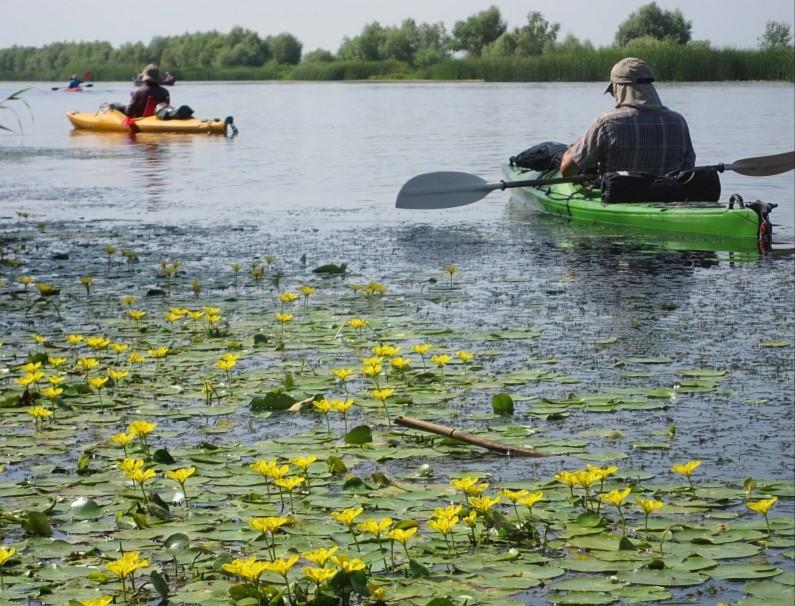 Danube Delta Nature Reserve kayak