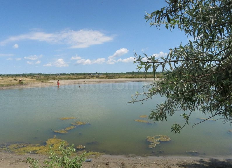 Danube Delta Nature Reserve letea sanddunes lake