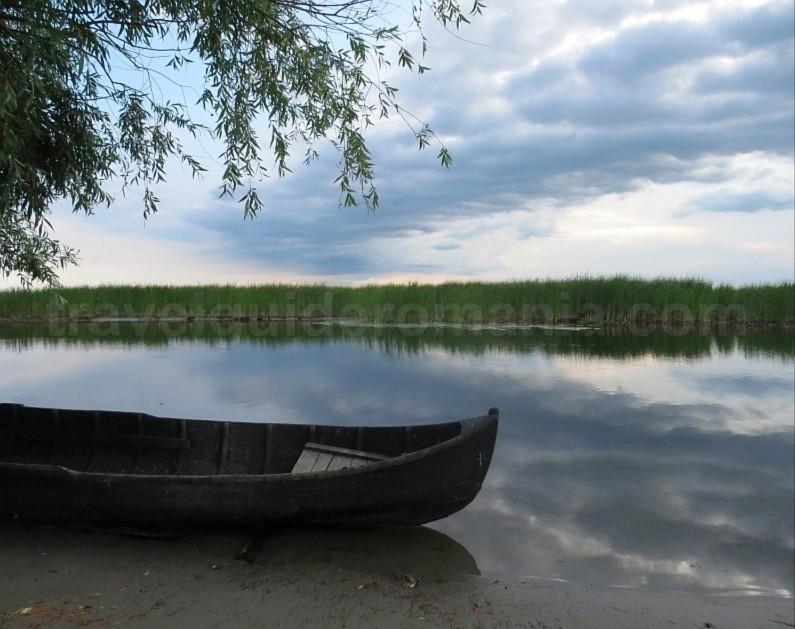 Danube Delta Nature Reserve reed