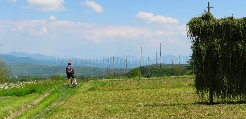Ecotourism destination Mara – Cosau – Creasta Cocosului from Maramures cycling pastures green ways