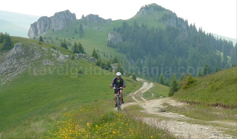 latoritei mountains boarnesu strategic road mountain-biking mtb