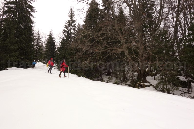 Snowshoeing trips in Romania - guided trips