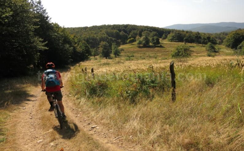 bigar eibenthal mountain bike Banat Mountains