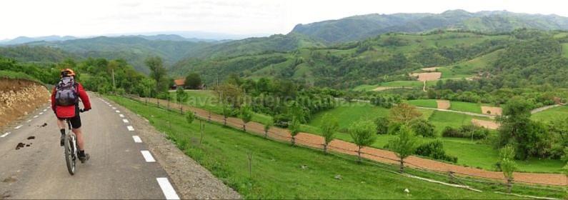 Banat Mountains Carsa Rosie
