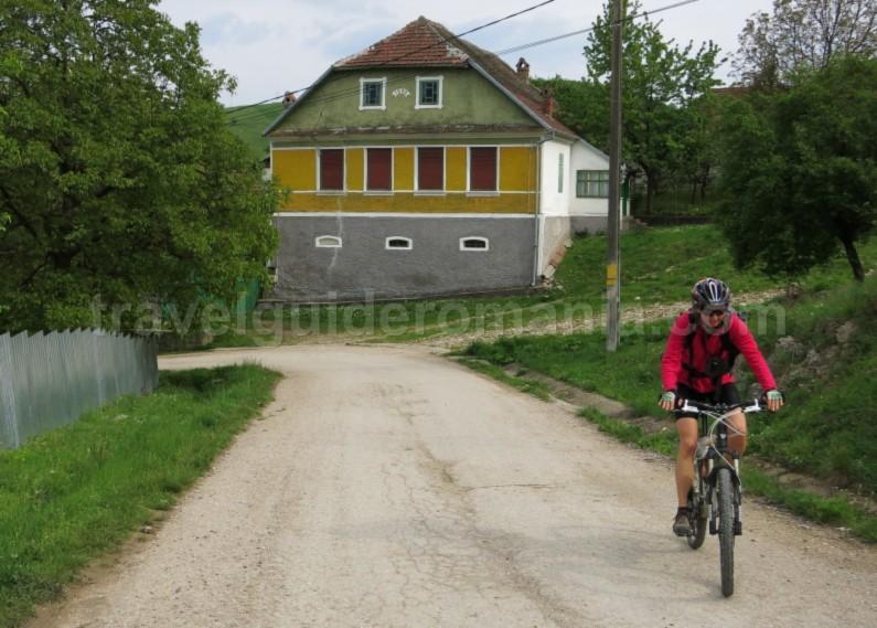 czech village Banat Mountains garnic