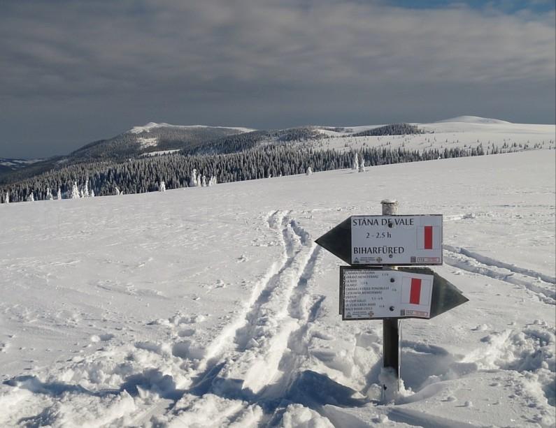 ski touring Bihor Vladeasa Mountains