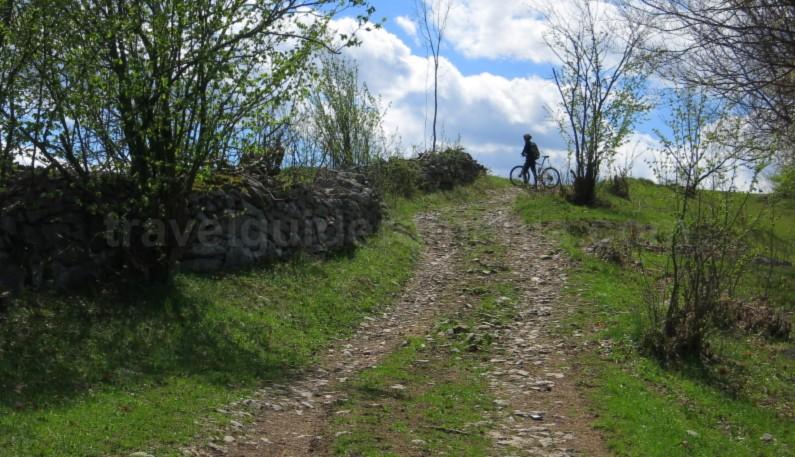 mountain biking Ponoara Padurea Craiului