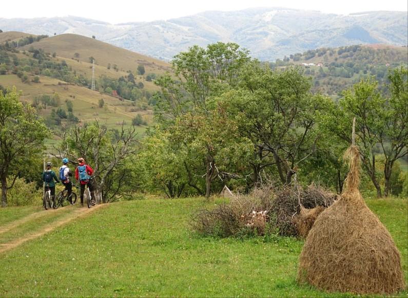mountain biking Ponoara Padurea Craiului Apuseni