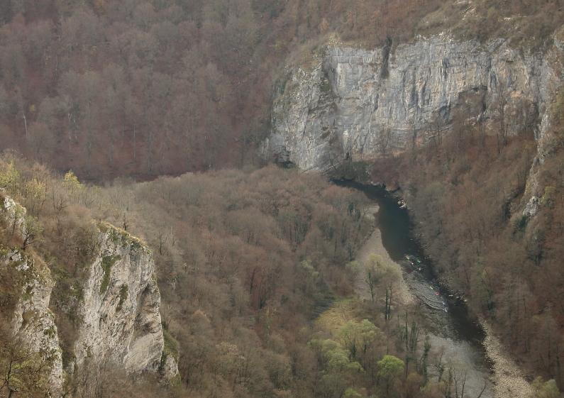 Crisul Repede Gorge - Padurea Craiului