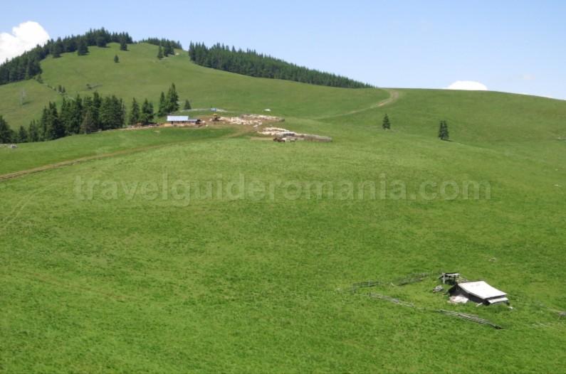 suhard-Ecoturism-Destination-Tara-Dornelor