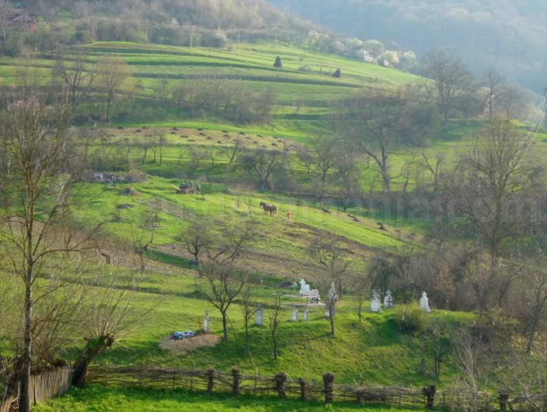 The Vascau Karst Plateau – The Apuseni Mountains varnita