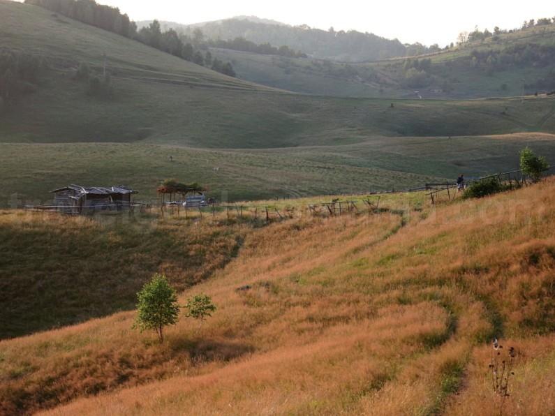 The Vascau Karst Plateau – The Apuseni Mountains aranda