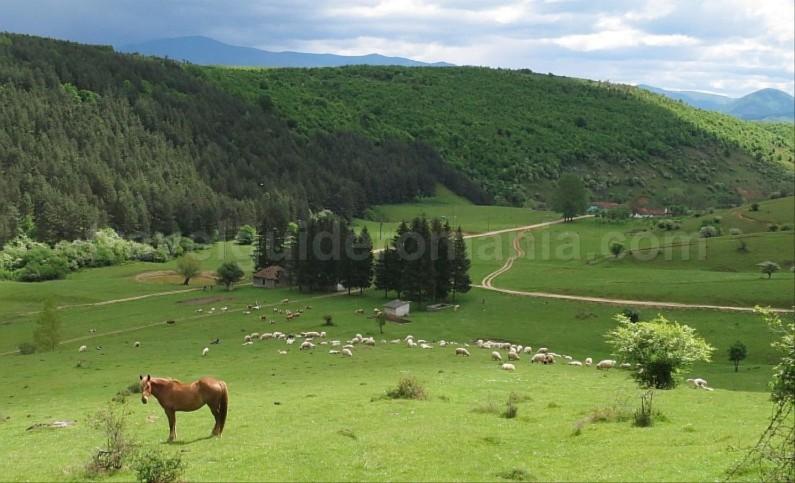 The Vascau Karst Plateau – The Apuseni Mountains izbuc