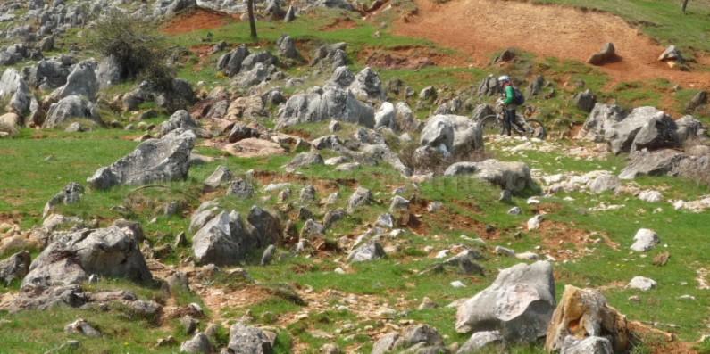 The Vascau Karst Plateau – The Apuseni Mountains lapiezuri colesti