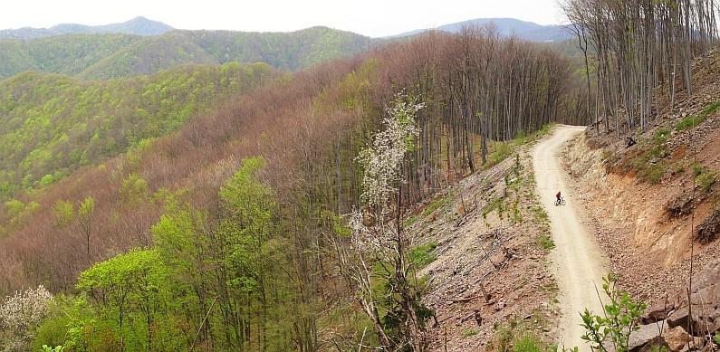 Padurea Craiului Mountains