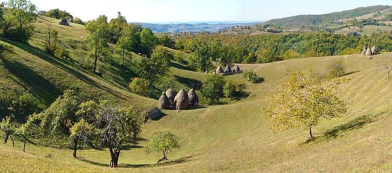 karst area Rosia in Padurea Craiului Mountains
