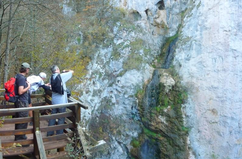 waterfall dalbina vanatarea
