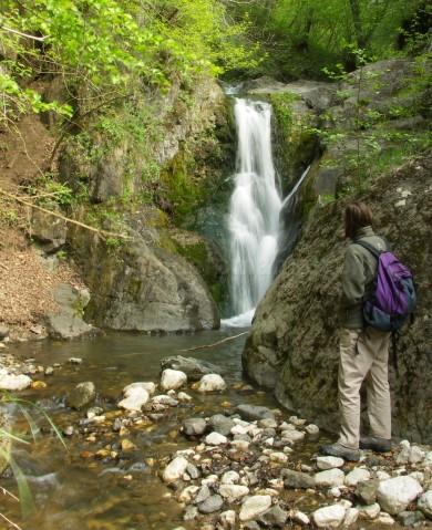 waterfall-gorges-borzestilor-trascau